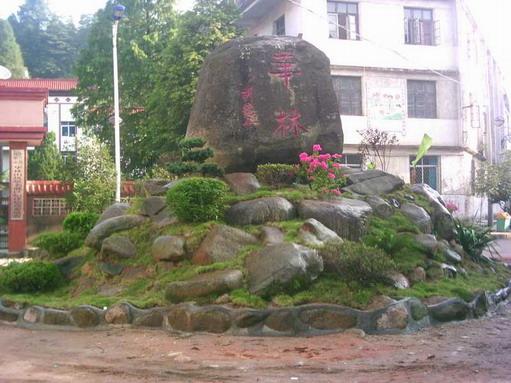 镌刻在高安市华林山风景名胜区内的胡德平同志题字大石